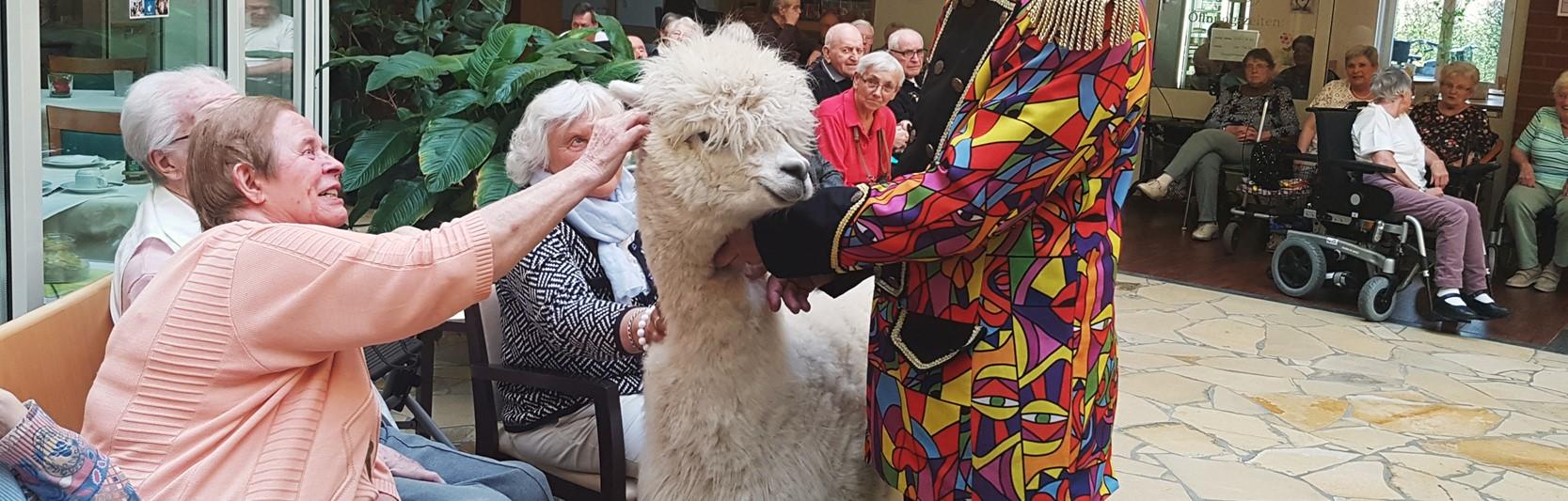 Newsartikel:Manege frei: Ein Zirkus zu Besuch im Pflegeheim