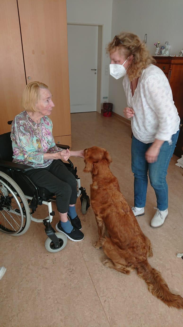 Tiergestütze Therapie